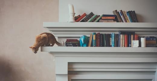 Шесть книг для бэкенд-разработчика